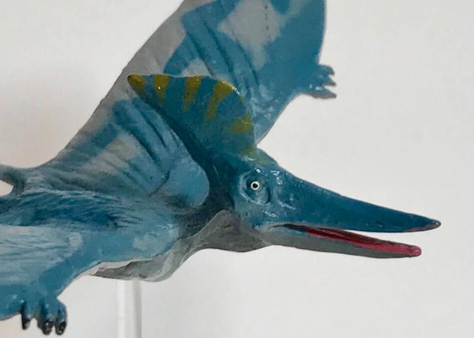 【恐竜フィギュア】プテラノドン・ステルンベルギ(フェバリット)レビュー        プテラノドン・ステルンベルギとは?プテラノドン・ステルンベルギ(フェバリット)レビューおわりに